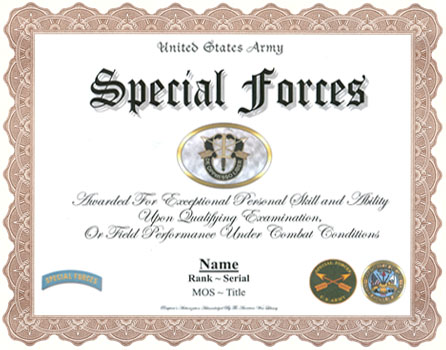 U S Army Special Forces Badge Display Recognition