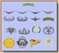 Qualification Badge Display Recognitions See Also Weapons
