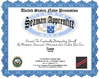 seaman apprentice navy rank display recognition