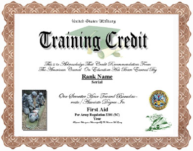 Military medal display recognitionscertificates first aid training credit image application form yadclub Choice Image