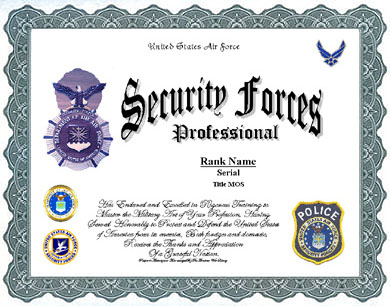 USAF Security Forces Service Display Recognition